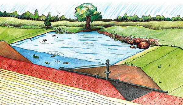 Build a pond for Koi pond overflow design