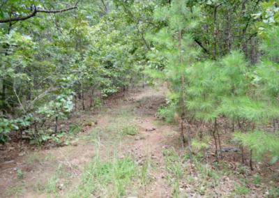 5-acres-latimer-county-oklahoma5
