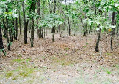 5-acres-latimer-county-oklahoma6