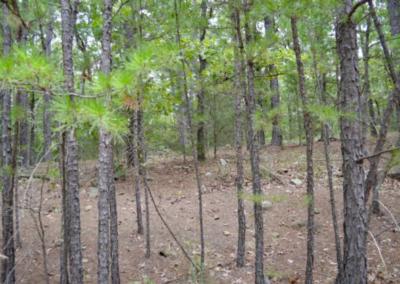 15 Acres – Latimer County, OK