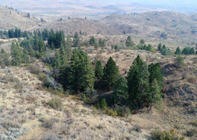 36-97-acres-tonasket-okanogan-county-wa12