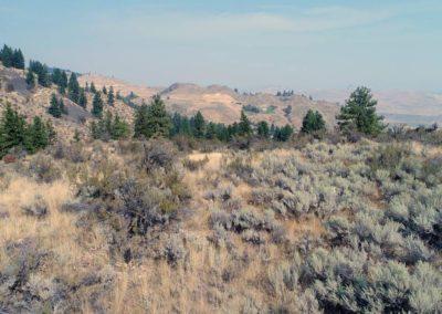36-97-acres-tonasket-okanogan-county-wa14