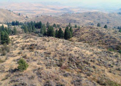 36-97-acres-tonasket-okanogan-county-wa15
