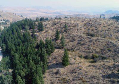 36-97-acres-tonasket-okanogan-county-wa19
