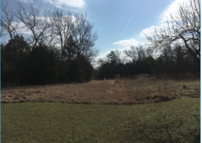 5 Acres – Pushmataha County, OK