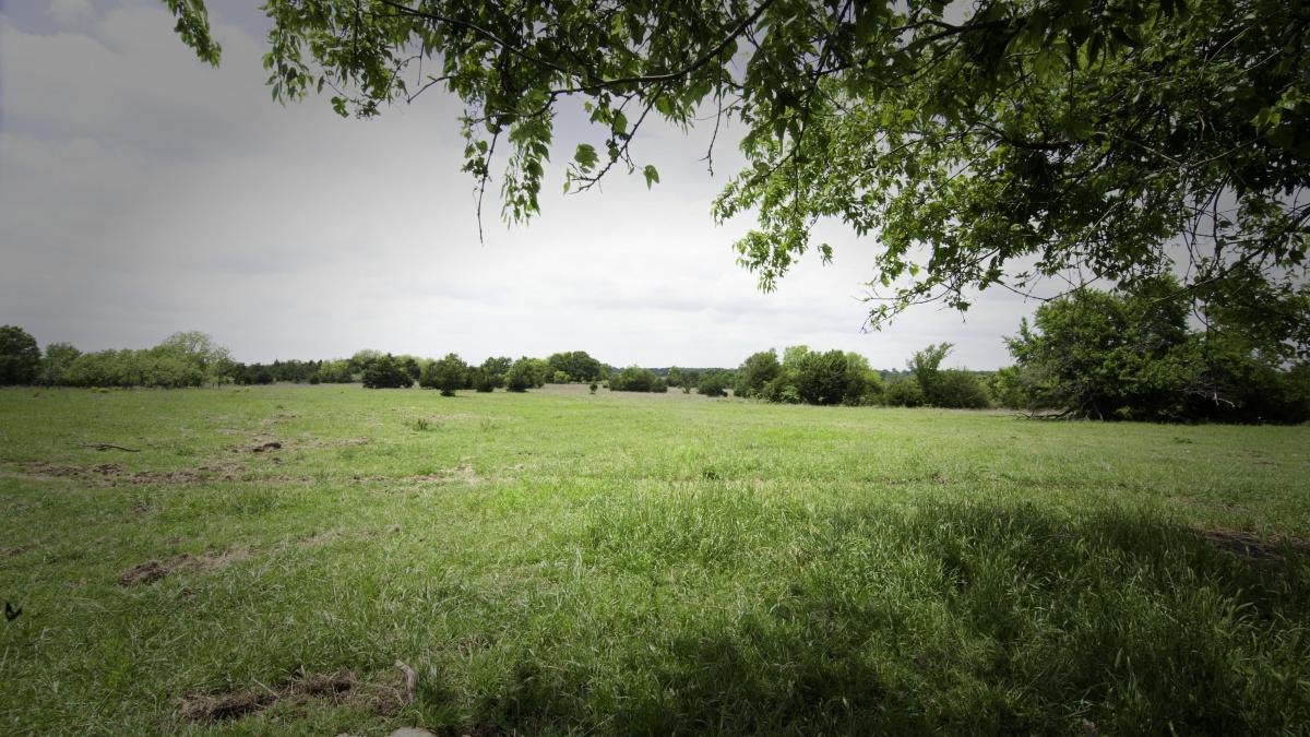 CR E1640, Roff, Oklahoma 74865, ,Land,For Sale,CR E1640,1006